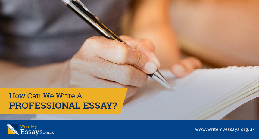 How Can We Write A Professional Essay?